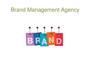 Brand Management Agency