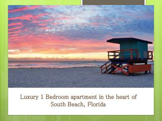 Luxury 1 Bedroom apartment in the heart of South Beach, Florida