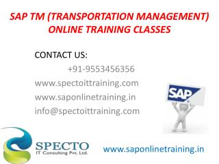 sap TM online training classes by real time experts