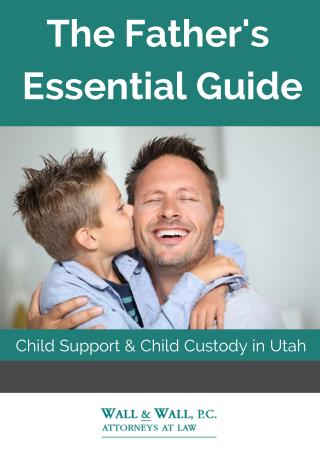 eBook- Father's Essential Guide to Child