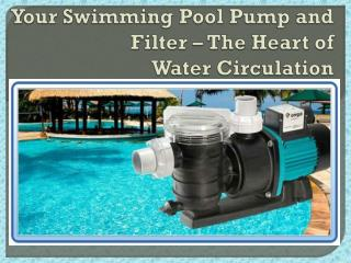Your Swimming Pool Pump and Filter – The Heart of Water Circulation
