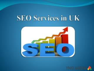 SEO Services in UK - YNG Media
