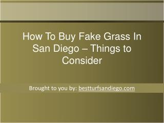 How To Buy Fake Grass In San Diego – Things to Consider