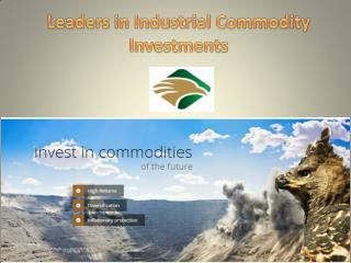 Leaders in Industrial Commodity Investments
