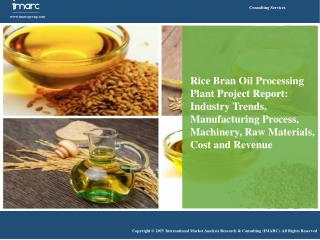 Rice Bran Oil Market: Increasing Demand in Food & Cosmetics Industry