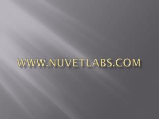 NuVet Labs: 7 Things Your Cat Wish You knew