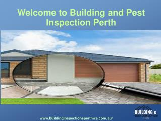 pest inspections perth