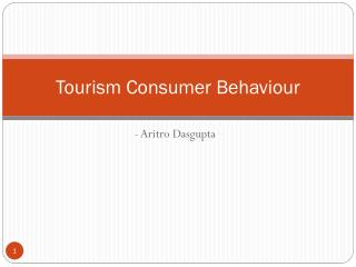 Tourism Consumer Behaviour at Skyline College