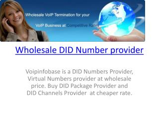 Wholesale DID Number