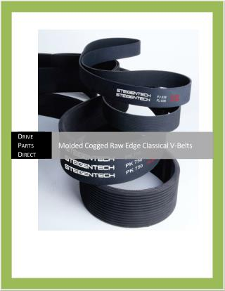 Molded Cogged Raw Edge Classical V-Belts
