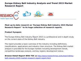 Europe Kidney Belt Industry 2015 Market Research Report