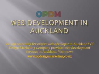 web development Auckland