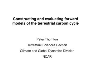 Constructing and evaluating forward models of the terrestrial carbon cycle