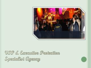 VIP & Executive Protection Specialist Agency