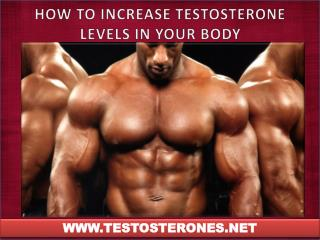 HOW TO INCREASE TESTOSTERONE LEVELS IN YOUR BODY