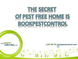 Pest control in Mumbai