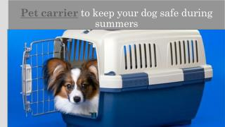 Pet carrier to keep your dog safe during summers