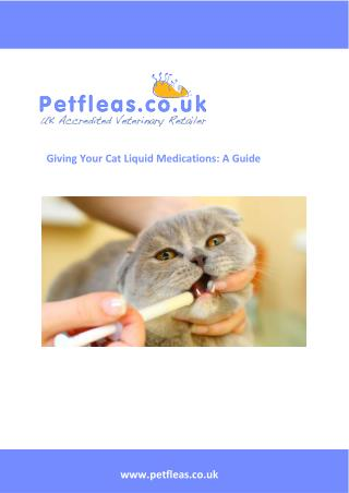 Giving Your Cat Liquid Medications: A Guide