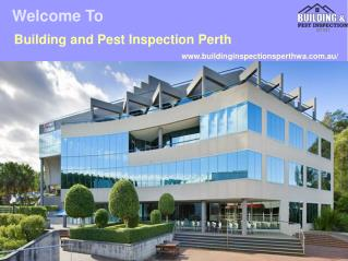 Pest and Building Inspections Perth