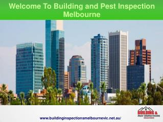 Strata Inspection Report Melbourne