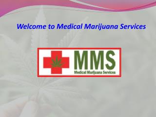 Remedial Revolution with Medical Marijuana Services