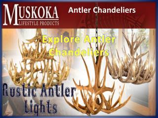 Explore Antler Chandeliers