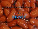 Tubulointerstitial disease of the KIDNEY