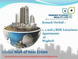 Konark Orchid by PPRL