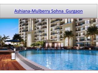 Ashiana Mulberry, Ashiana Homes Sohna, Ashiana Mulberry