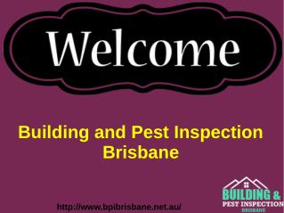 Pre Purchase Building Inspections Brisbane