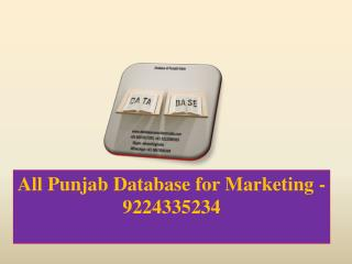 All Punjab Database for Marketing -9224335234