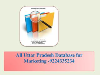 All Uttar Pradesh Database for Marketing -9224335234