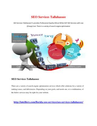 SEO Services Tallahassee