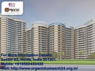 Rise Organic Homes in Ghaziabad NH24 Call us 91 95604 50435