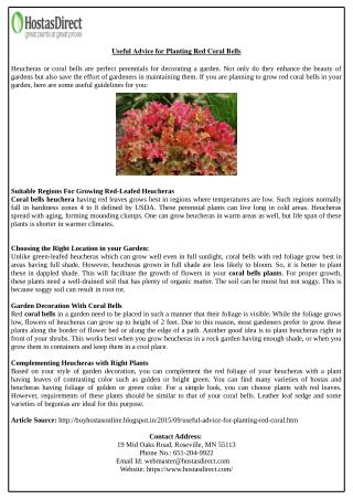 Useful Advice for Planting Red Coral Bells
