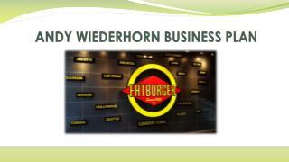 ANDY WIEDERHORN BUSINESS PLAN