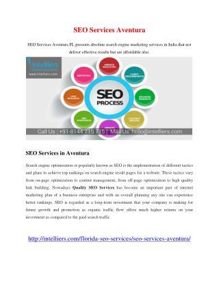 SEO Services Aventura