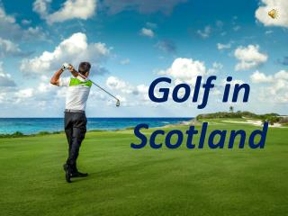 Enjoy Scotland Golf Tours | Scotia Golfing