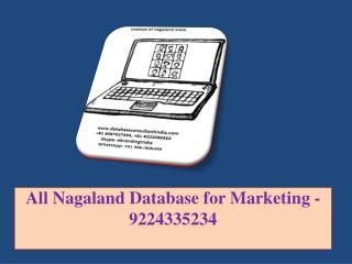 All Nagaland Database for Marketing -9224335234