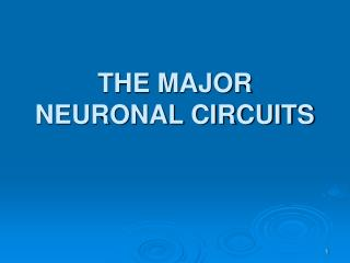 THE MAJOR NEURONAL CIRCUITS
