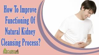 How To Improve Functioning Of Natural Kidney Cleansing Process?