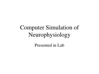 Computer Simulation of Neurophysiology