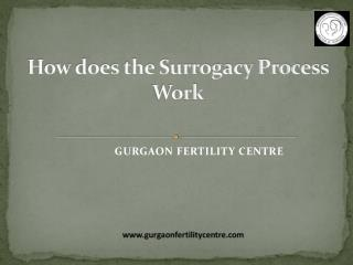 How Does the Surrogacy Process Work