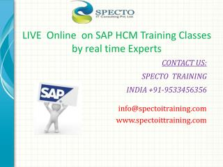 Best  online training classes on sap hcm usa payrolls