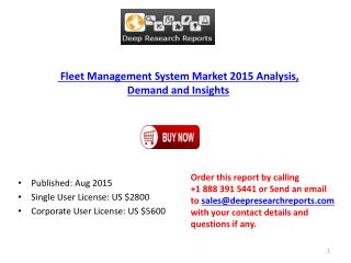 2015-2020 Global Fleet Management System Market Research Analysis