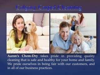 Calgary Pet Stain Removal