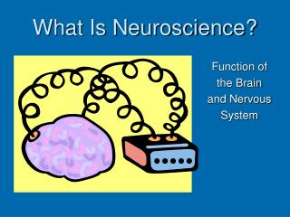 What Is Neuroscience