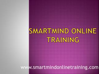 Smartmind Online Training Teaching Process | Smartmind Online Training Review