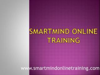 Smartmind Online Training Teaching Process | Smartmind Online Training Review