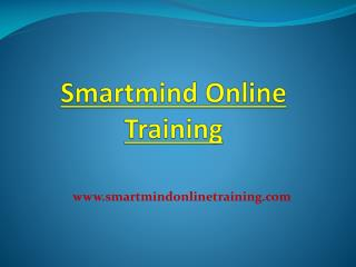 Smartmind Online Training Tutorial Review | Smartmind Online Training Review
